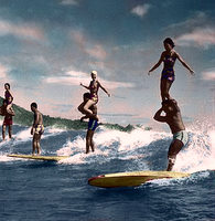 surfing-in-hawaii.jpg