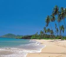 Caribbean beachy